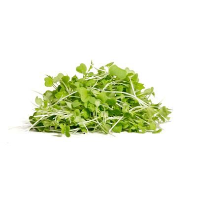 נבטי מיזונה ירוקה